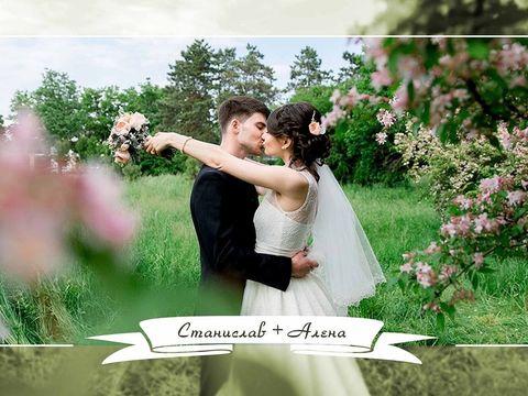 Свадьба Станислава и Алёны