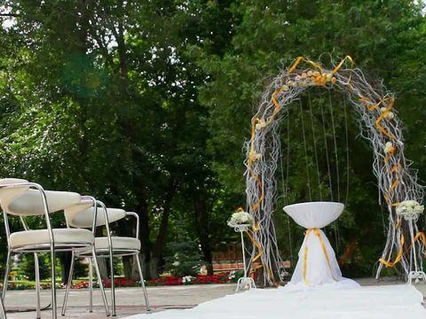 Свадебный клип. Выездная регистрация в стиле Лас Вегас